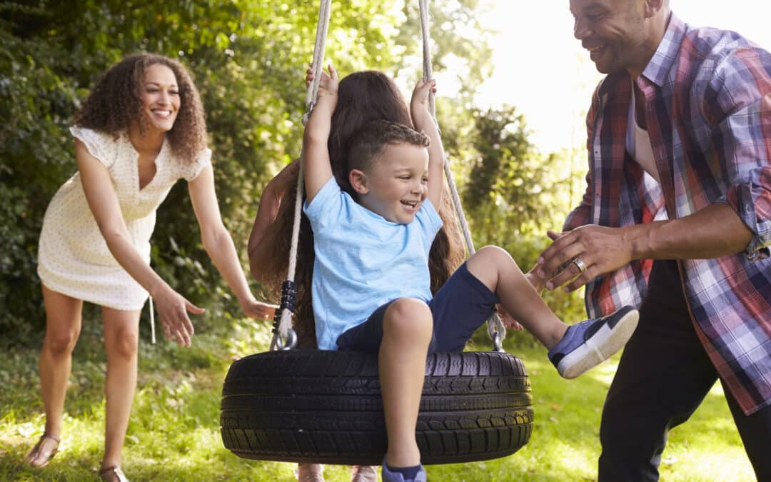 What To Look For In a Tree Swing